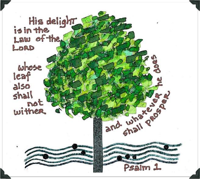 Psalm 1 Photo
